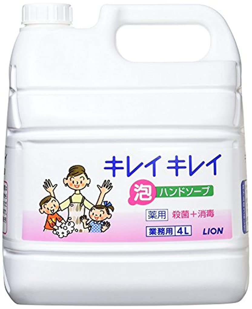害公園予防接種するキレイキレイ薬用泡ハンドソープ4L