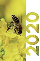 2020: Bumble bee gifts and collectibles Chic Planner Calendar Organizer Daily Weekly Monthly Student Diary for research on what to give a beekeeper