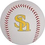福岡ソフトバンクホークス×GP(ジーピー) 野球 ボール 硬式 練習球 サインボール 1個 36852