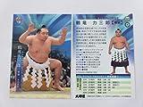 BBM2019 大相撲■レギュラーカード■02/鶴竜 力三郎/横綱