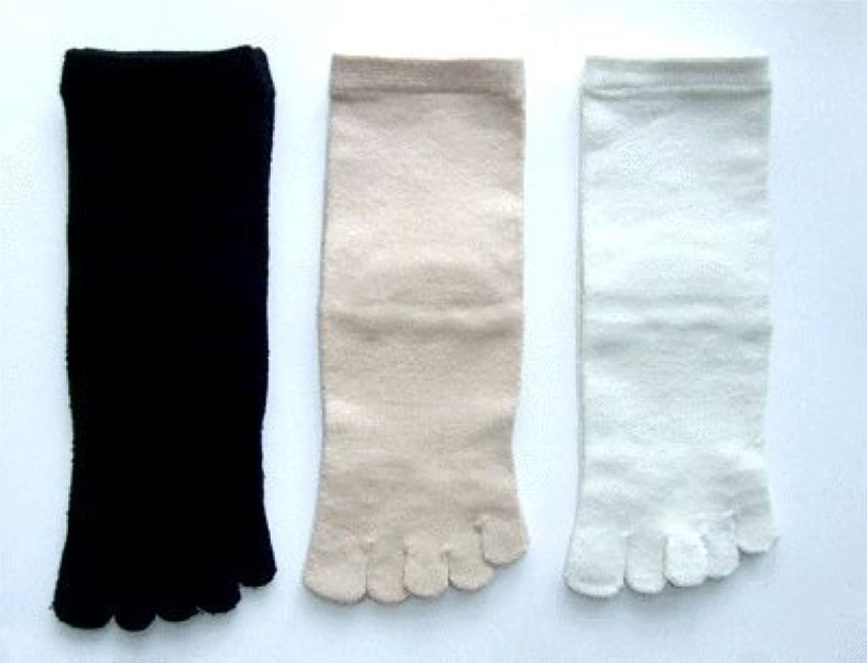 瞑想的予想するウミウシ日本製 こだわりのシルク 5本指ソックス レディース 22~24cm 3足組