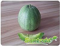 種子:20PCS:Suntodayグリーンフレッシュグリーン外皮Cucumisにメロオーガニックメロンフルーツ種子20PCS