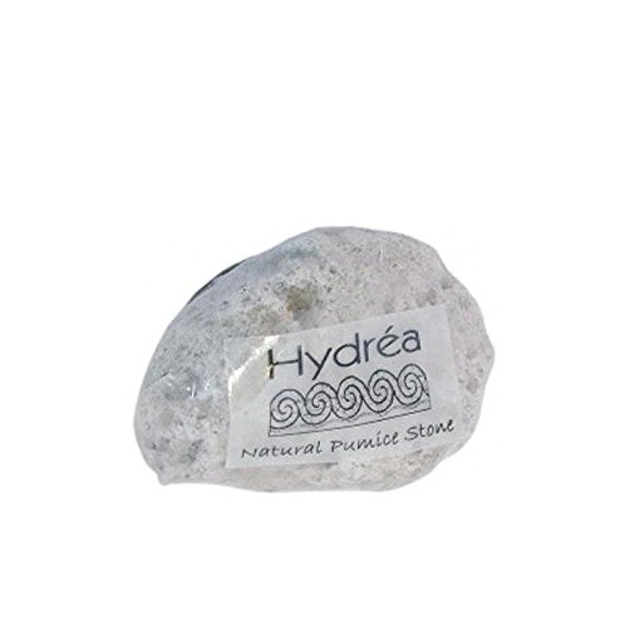 ジャンクノートプラスチックHydrea London - Natural Pumice Stone (Pack of 6) - ハイドレアロンドン - 自然軽石 x6 [並行輸入品]