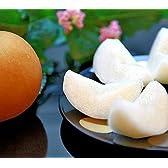 熊本県産 梨 なし 新高梨 にいたかなし 約5kg 7~9玉入り