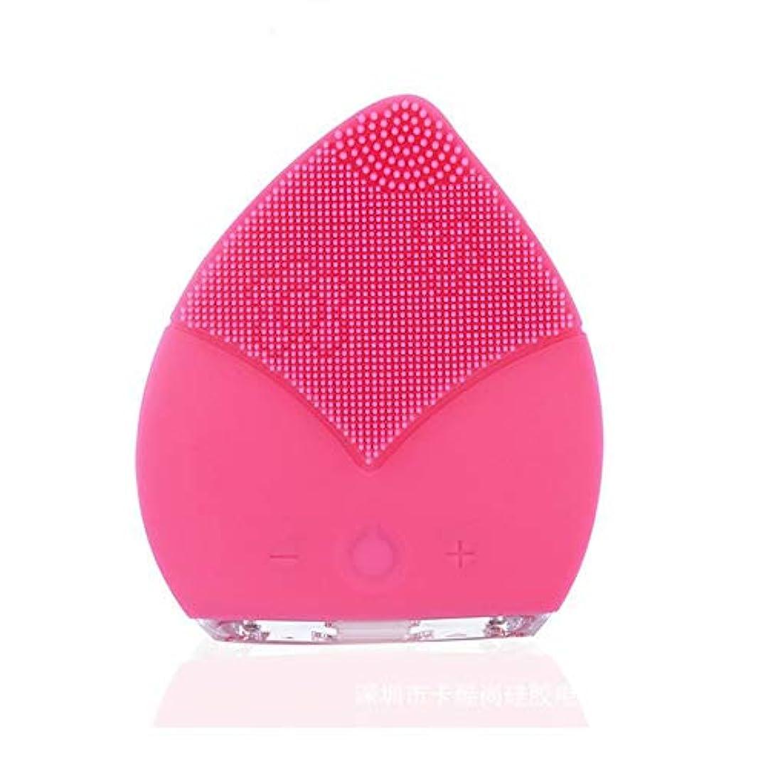 晴れキャンプ参加者ZXF コンパクトポータブルクリーニングポアクレンジング楽器電気シリコーンダブル振動クレンジングブラシ超音波防水ミュート美容機器 滑らかである (色 : Pink)