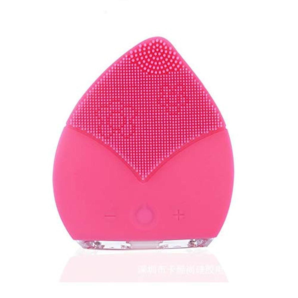 欠乏によって野心ZXF コンパクトポータブルクリーニングポアクレンジング楽器電気シリコーンダブル振動クレンジングブラシ超音波防水ミュート美容機器 滑らかである (色 : Pink)