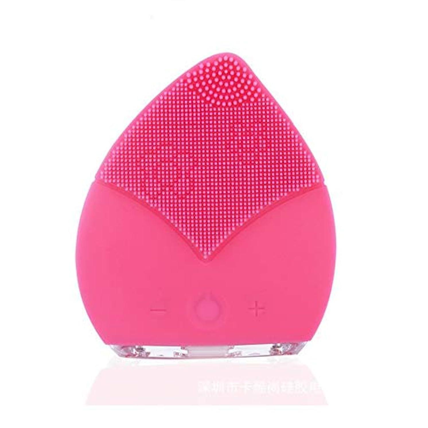 配る自治肝ZXF コンパクトポータブルクリーニングポアクレンジング楽器電気シリコーンダブル振動クレンジングブラシ超音波防水ミュート美容機器 滑らかである (色 : Pink)