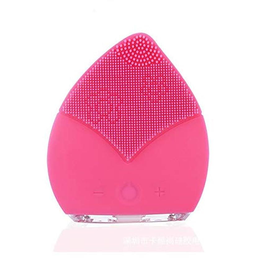 ZXF コンパクトポータブルクリーニングポアクレンジング楽器電気シリコーンダブル振動クレンジングブラシ超音波防水ミュート美容機器 滑らかである (色 : Pink)