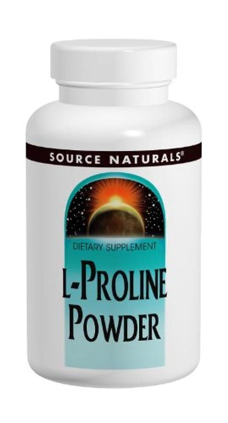 血乱暴な良いL-プロリン 2000mg Powder 4oz