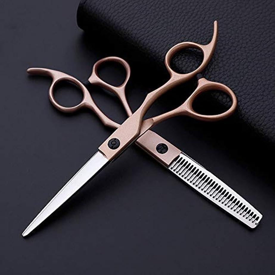 床を掃除する心配する受取人WASAIO 髪のスリップのはさみプロフェッショナルステンレス理容はさみセット美容理髪クラシック斜めハンドルのレベル+歯6インチ (色 : Rose gold)