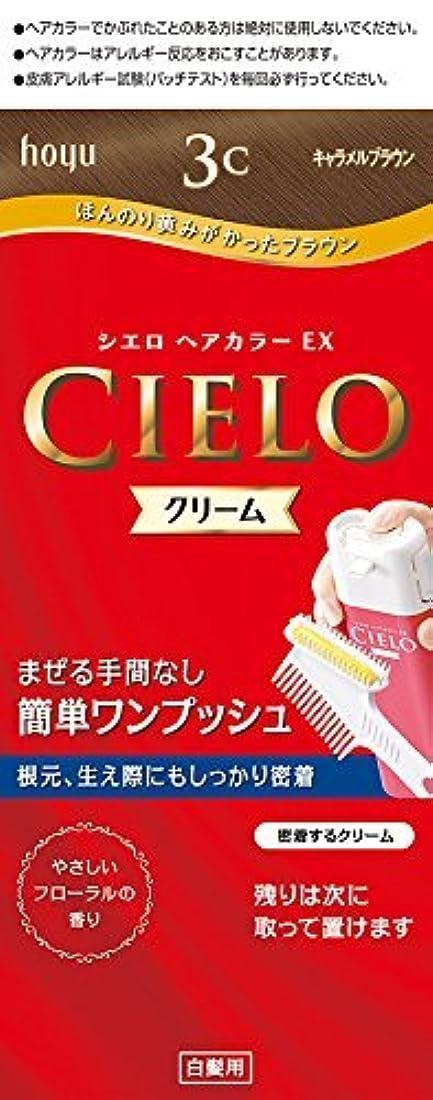 混乱フルーティー苦ホーユー シエロ ヘアカラーEX クリーム 3C (キャラメルブラウン)×6個
