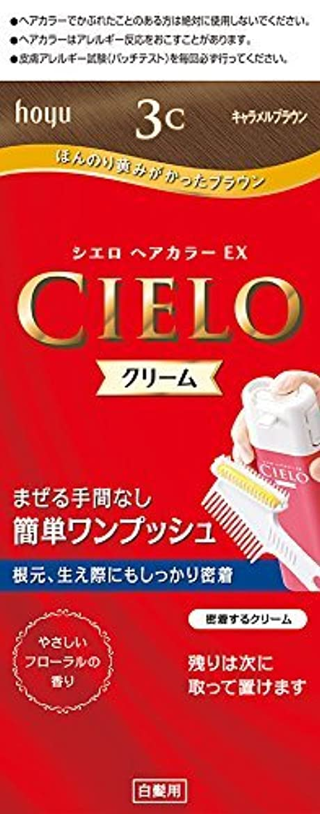 にんじん確執優れたホーユー シエロ ヘアカラーEX クリーム 3C (キャラメルブラウン)×6個