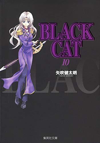 BLACK CAT 10 (集英社文庫―コミック版)の詳細を見る