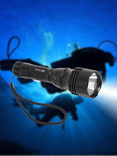 praise (プレイズ) ダイビングライト 水中ライト 水中LEDライト ダイビング 電池式 CREE 懐中電灯 ダイビング用ライト 防災グッズ