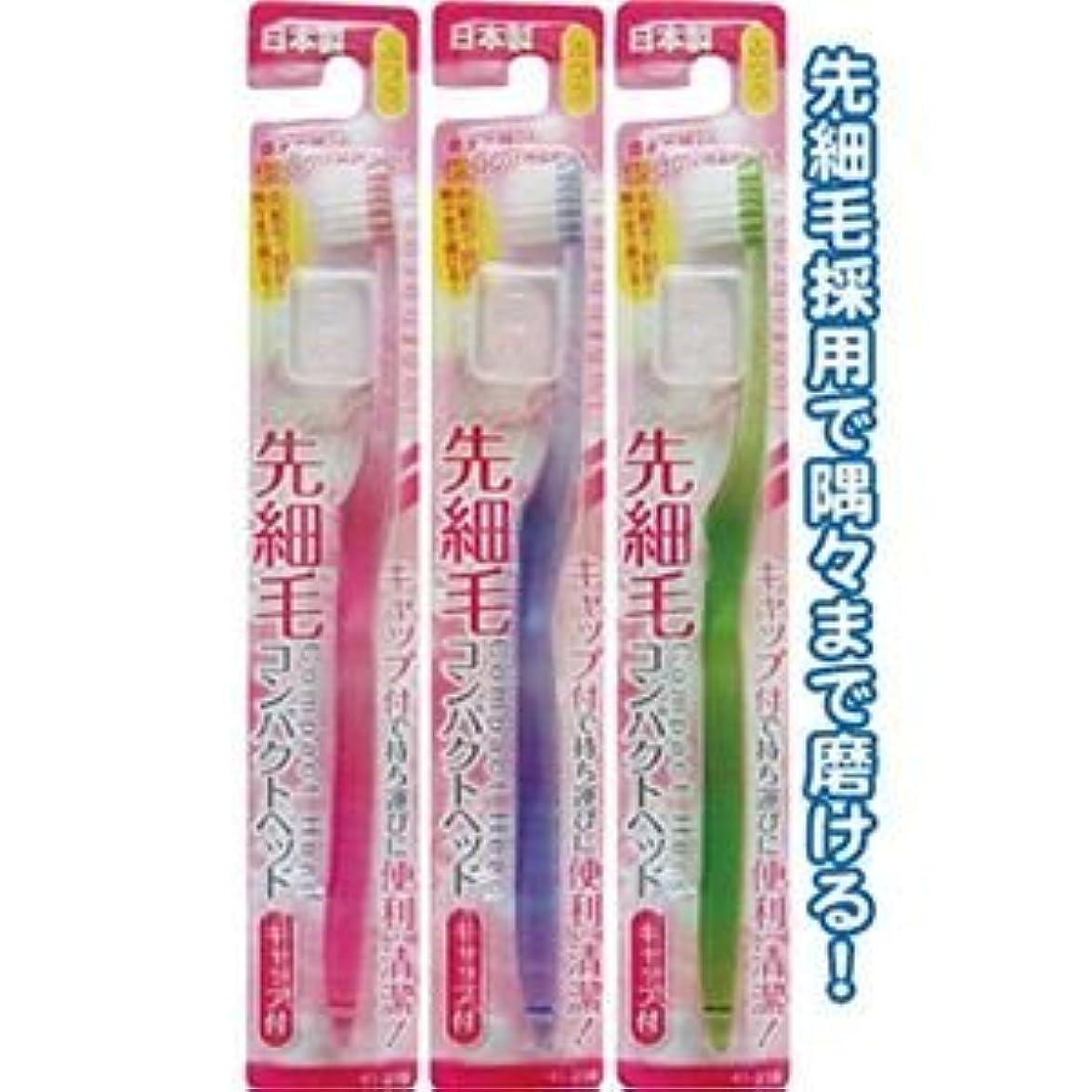 で値下げ払い戻しコンパクトヘッドキャップ付歯ブラシ先細ふつう日本製 【12個セット】 41-218