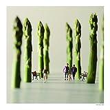 Small Wonders: Life Portrait in Miniature 画像