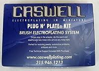Caswell プラグアンドプレート シルバー電気メッキキット