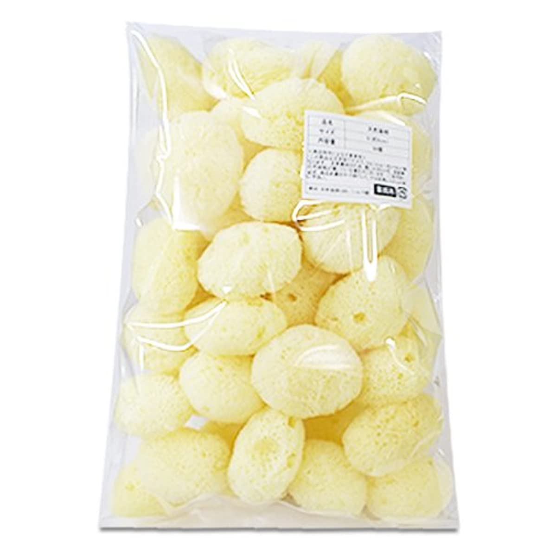 【業務用】天然海綿シルク サイズ5(約5cm)1袋50個入り│プロ仕様 吸収力?耐久力抜群 サニタリー