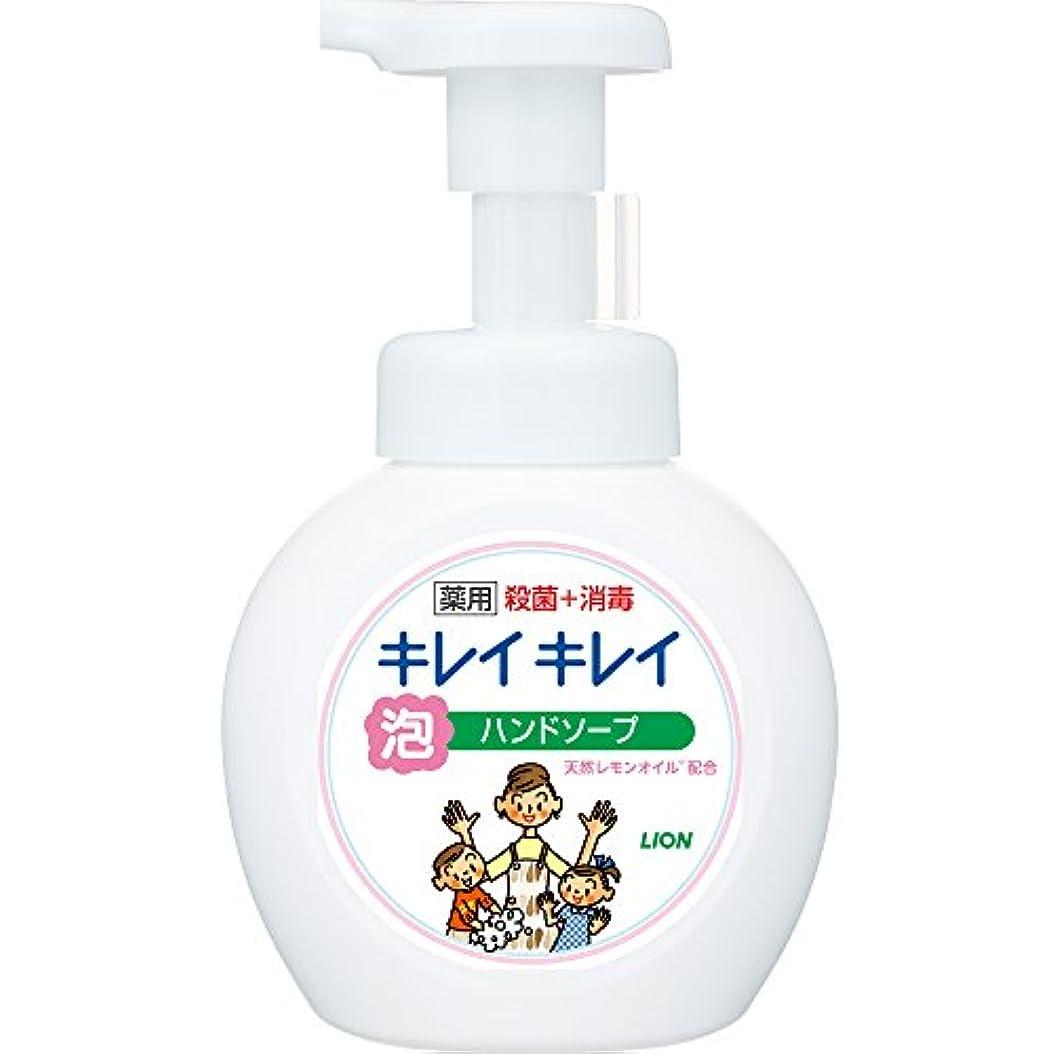 豊富にデコラティブインドキレイキレイ 薬用 泡ハンドソープ シトラスフルーティの香り 本体ポンプ 250ml(医薬部外品)