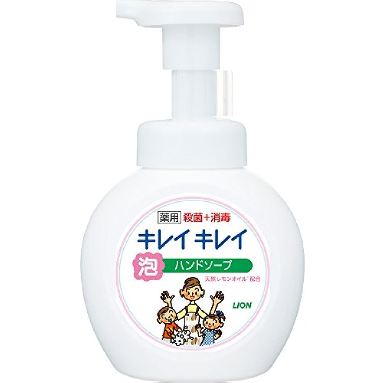 解釈する修理可能オーナーキレイキレイ 薬用 泡ハンドソープ シトラスフルーティの香り 本体ポンプ 250ml(医薬部外品)