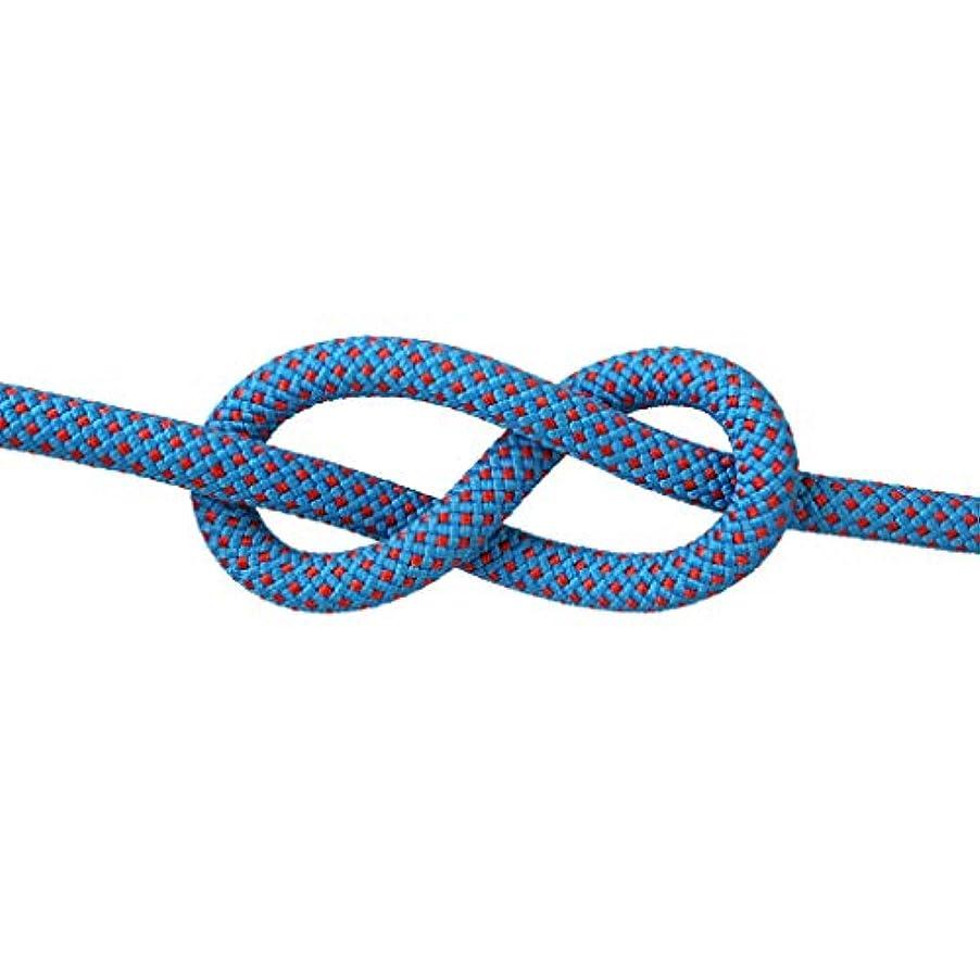散歩に行く判読できないペルメルKTYXDE クライミングロープの命を救うエスケープロープスパイダーマンロープスピードドロップロープ様々なサイズの色 クライミングロープ (Color : G, Size : 8mm 10m)