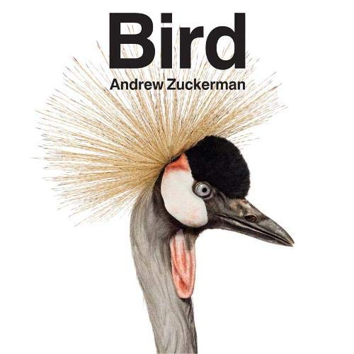 Birdの詳細を見る