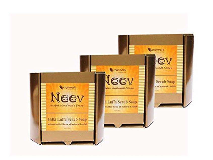 助けになる雇用者証明する手作り アーユルヴェーダ ニーブ ひょっこり(ヘチマ) スクラブ ソープ 100g 3セット NEEV GILKI LUFFA SCRUB SOAP
