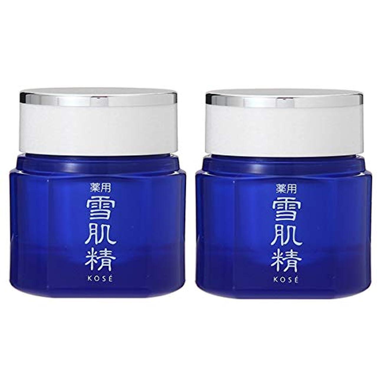に向けて出発化学薬品資産【セット】コーセー 雪肌精 クリーム 40g 2個セット