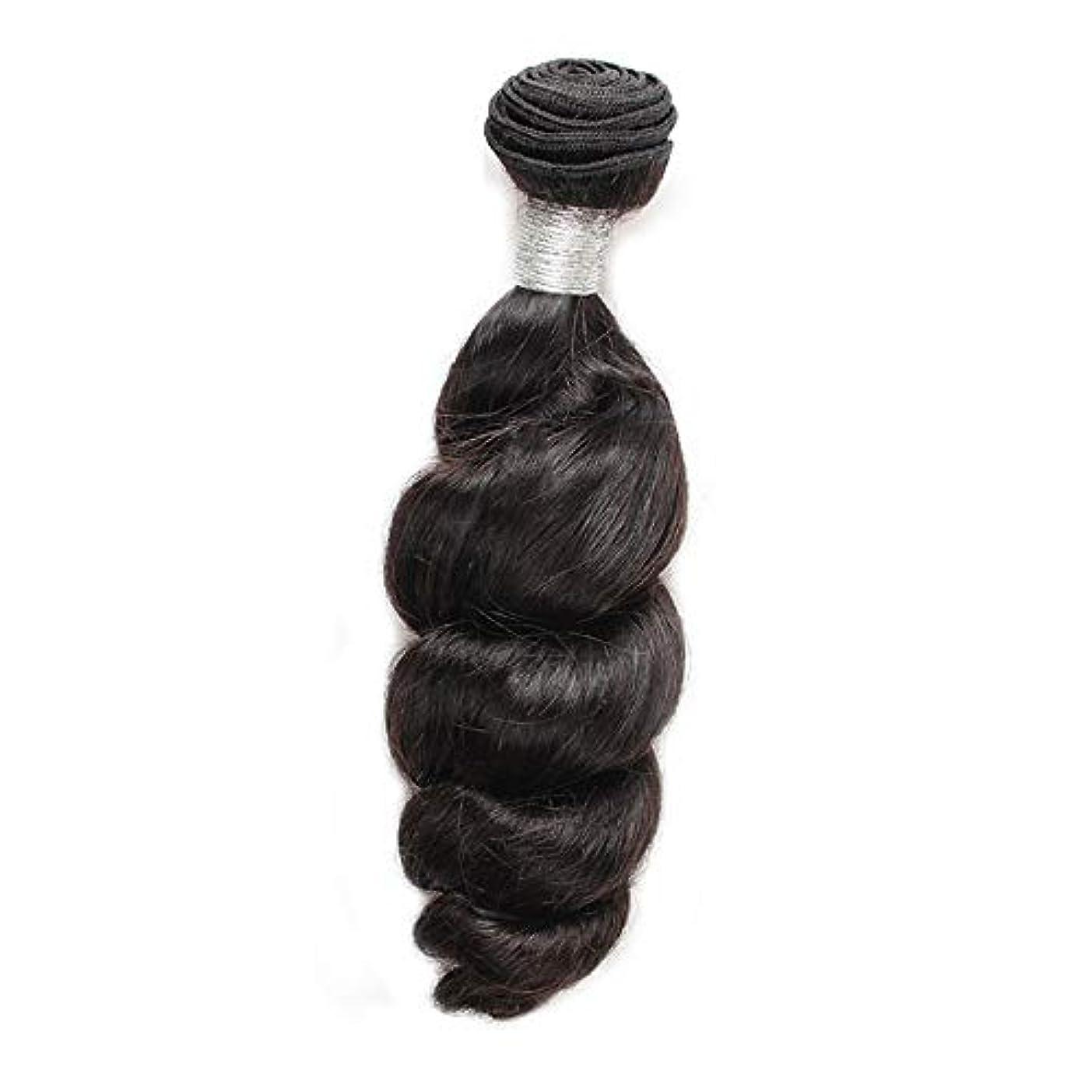 安西暗くする目を覚ますHOHYLLYA 女性の人間の髪の毛ブラジルのバージンルースウェーブの束横糸ナチュラルブラック100g /個1枚入り(12インチ-26インチ)合成髪レースかつらロールプレイングかつらストレートシリンダーショートスタイル女性自然...