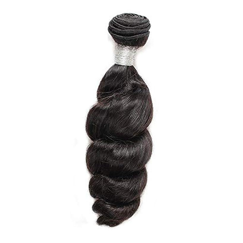 教育するどれかリズムHOHYLLYA 女性の人間の髪の毛ブラジルのバージンルースウェーブの束横糸ナチュラルブラック100g /個1枚入り(12インチ-26インチ)合成髪レースかつらロールプレイングかつらストレートシリンダーショートスタイル女性自然...