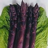 世界十大最高級野菜 幻の純紫アスパラガス 4粒 F1品種