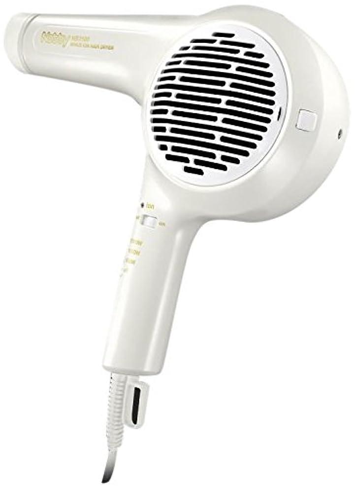 音声政策お願いしますテスコム ノビー(Nobby) マイナスイオンヘアドライヤー NB3100 ホワイト 単品