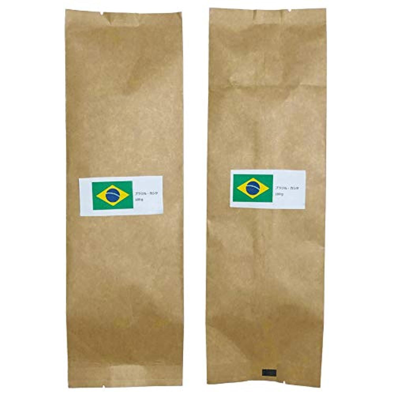 【最高級】【豆のまま】【自家焙煎】カシケ社認定 ブラジル 100g×2 【焙煎度:2】