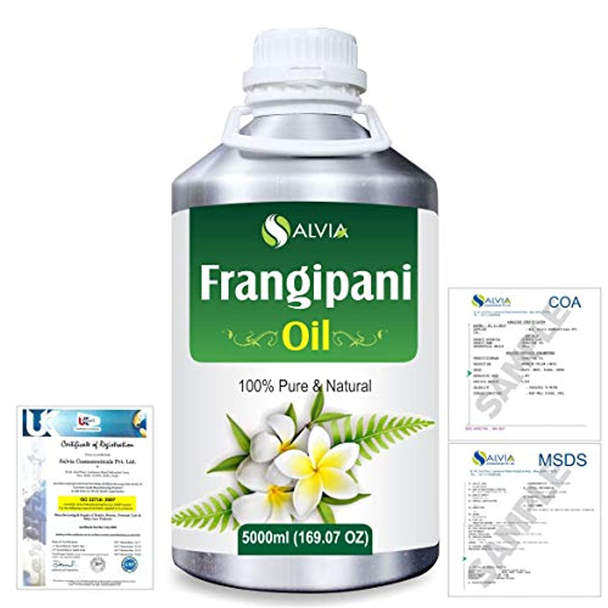 男性不格好メッセンジャーFrangipani (Plumeria Alba) 100% Natural Pure Essential Oil 5000ml/169fl.oz.