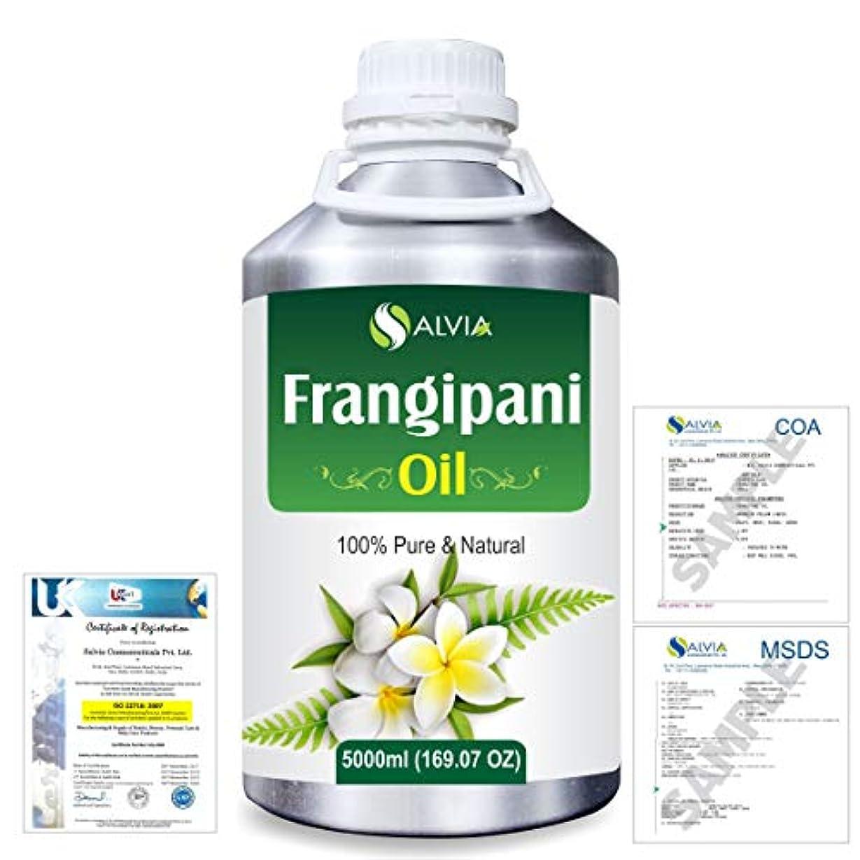 パイ殺人残基Frangipani (Plumeria Alba) 100% Natural Pure Essential Oil 5000ml/169fl.oz.