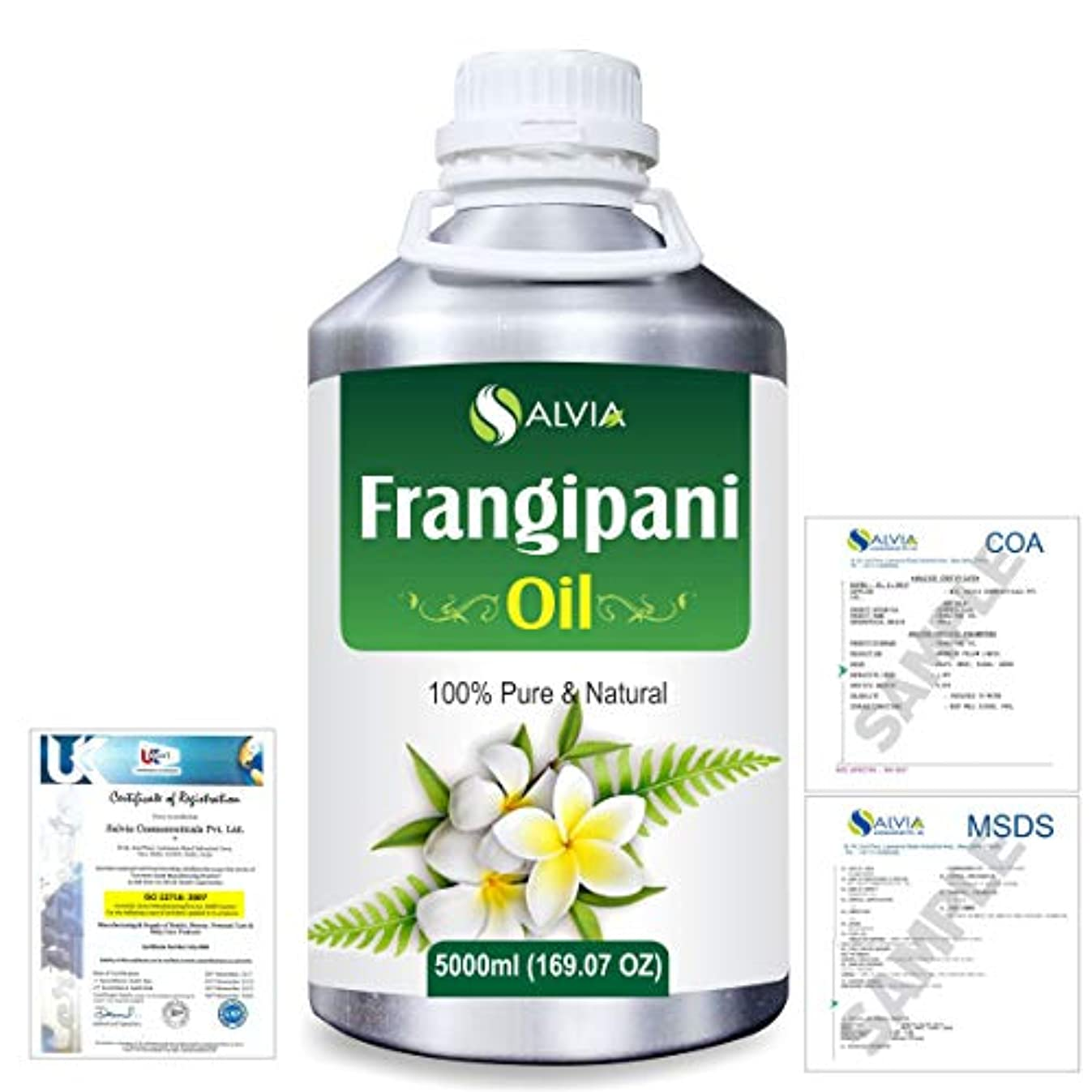 トロリーバス休憩雪のFrangipani (Plumeria Alba) 100% Natural Pure Essential Oil 5000ml/169fl.oz.