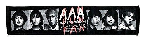 AAA FAN MEETING ARENA TOUR 201...