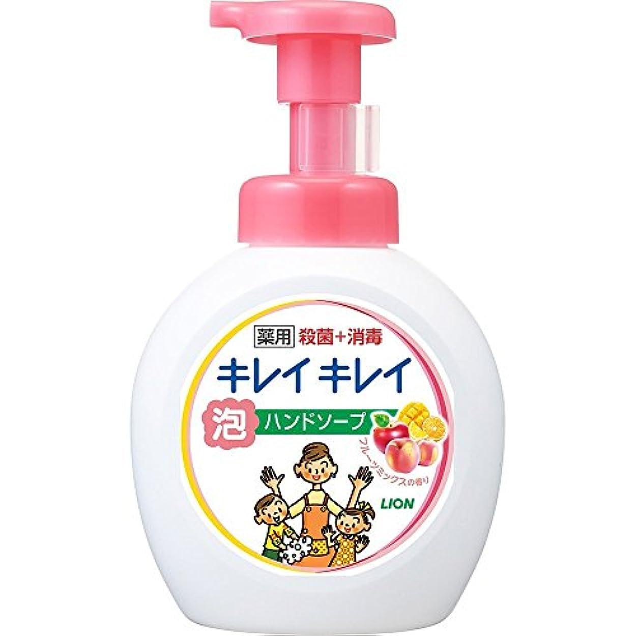 蓄積する留め金ジャーナリストキレイキレイ 薬用 泡ハンドソープ フルーツミックスの香り 本体ポンプ 大型サイズ 500ml(医薬部外品)