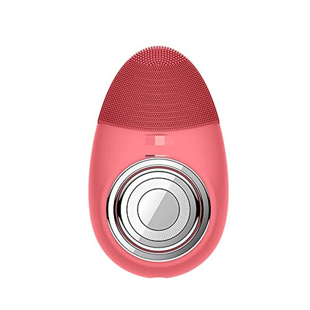 発音するマキシム機動Donghechengkang 多機能電気恒温シリコーンクレンジング楽器赤灯肌清潔毛穴クリーナー輸入機器美容機器 (Color : Red)