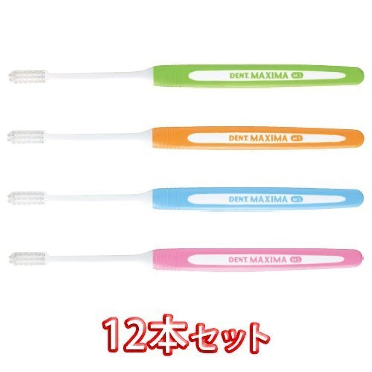 ユーモラスロータリーもろいライオン DENT.MAXIMA ハブラシ MS(ミディアムソフト) × 12本【デント マキシマ】歯科用 歯ブラシ