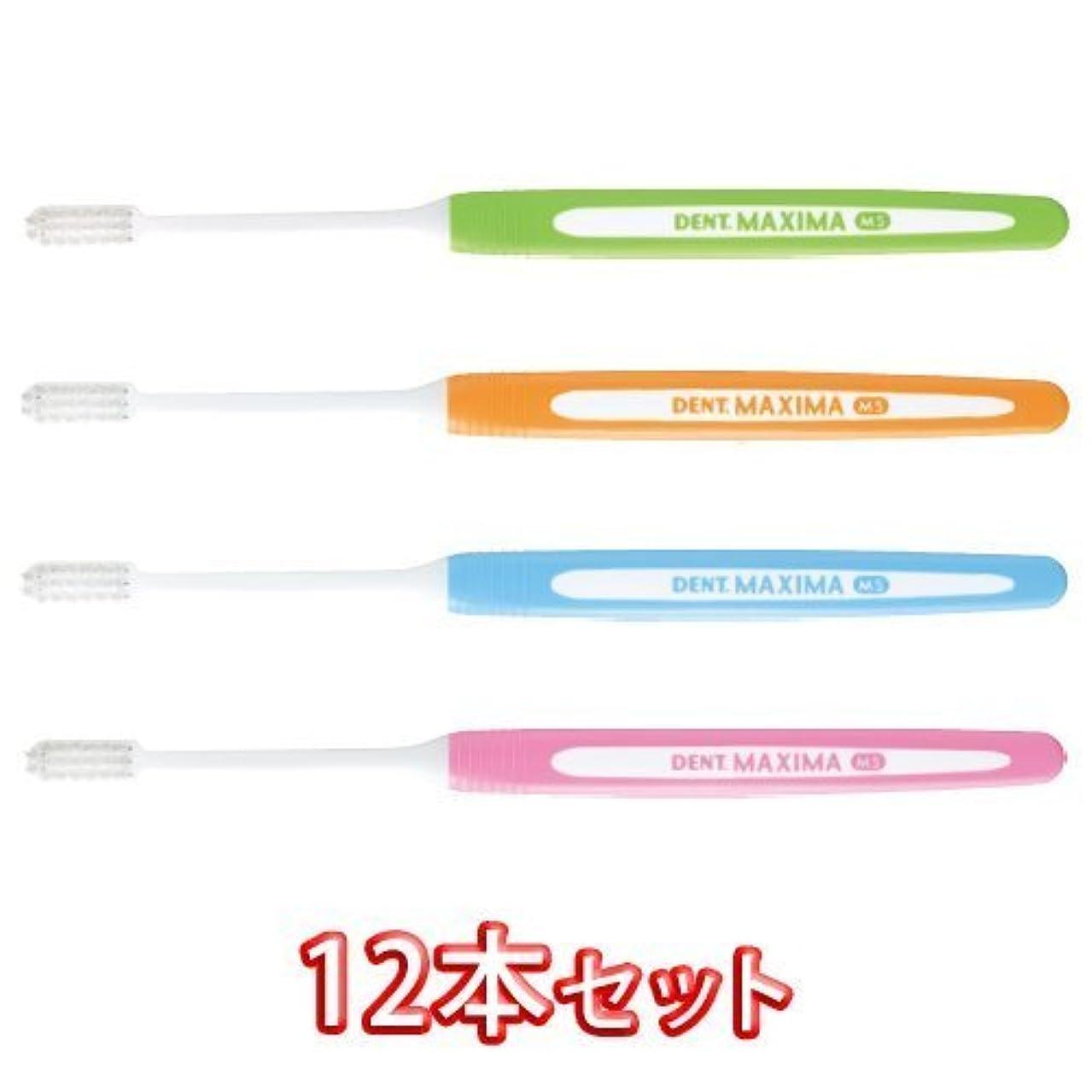 ライオン DENT.MAXIMA ハブラシ MS(ミディアムソフト) × 12本【デント マキシマ】歯科用 歯ブラシ