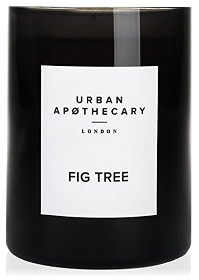 操作可能スリルロック解除URBAN APOTHECARY キャンドル(大) FIG TREE 300g