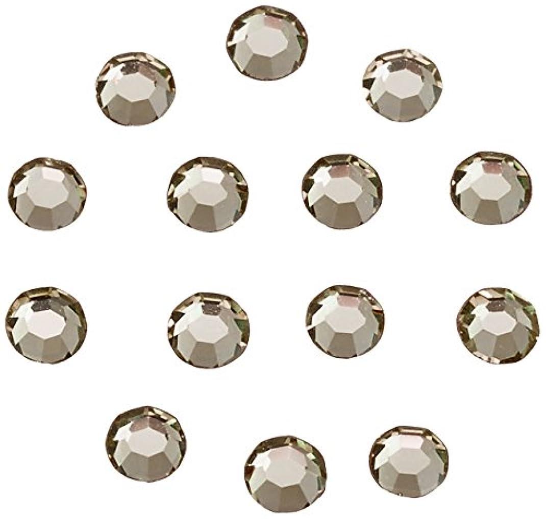 フェッチレビュー裁定ネイルアートパーツ ブラックダイヤモンド SS3:約1mm 240P