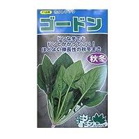 サカタ交配 ゴードンホウレンソウ サカタのタネのほうれん草品種です。