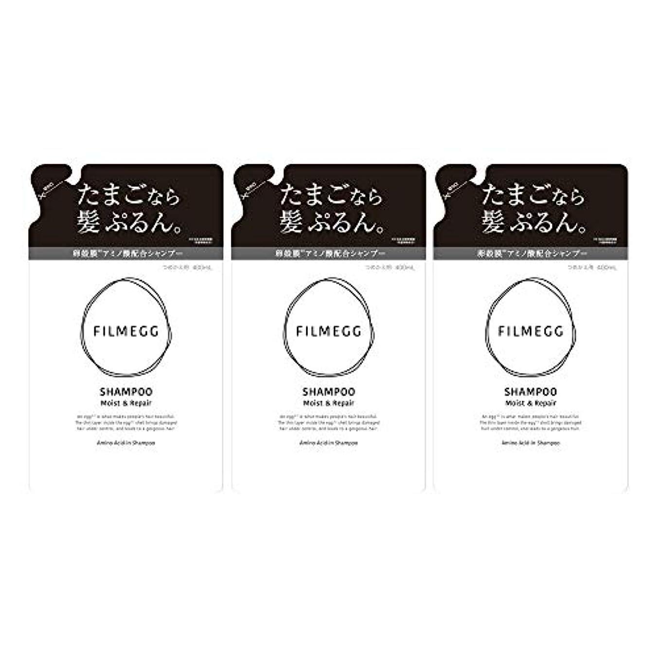 凍る漏れバン【3個セット】FILMEGG(フィルメッグ) シャンプー 詰替え 400ml