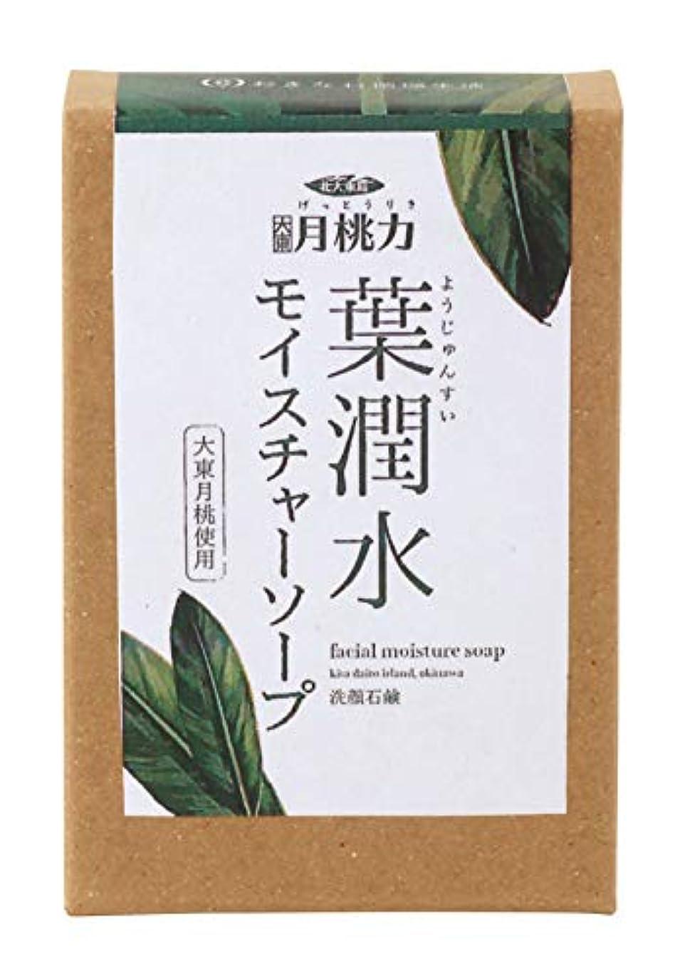 クレタ腹徹底的に葉潤水モイスチャーソープ 80g