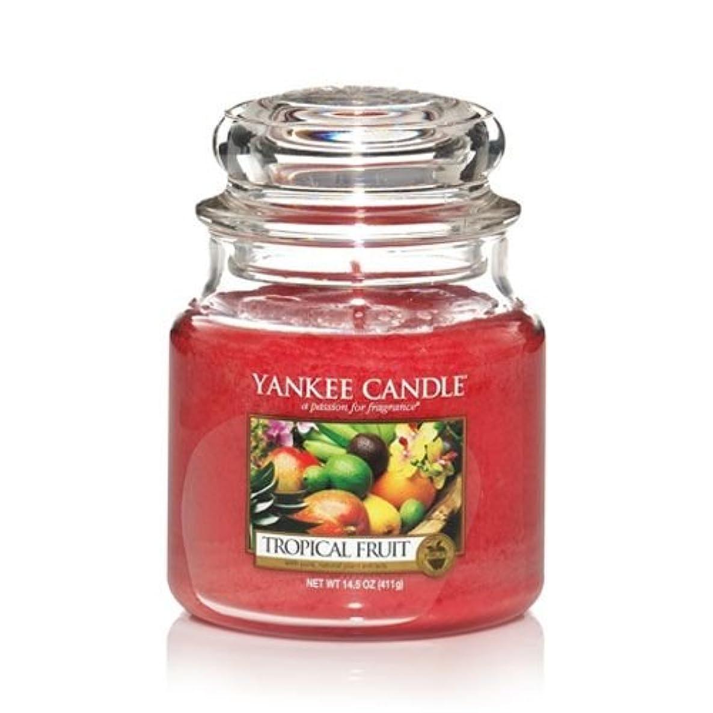 情緒的浅い刺しますYankee Candle 14.5 Oz Jar Candleトロピカルフルーツ
