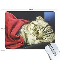 マウスパッド ゲーミング オフィス 眠っているscottish Fold Cat Sleeping Sweetly 防水 滑り止めゴム底 耐久性が良い 高級感 おしゃれ 疲労低減 自由な操作できる 厚い 25x19x0.5 cm