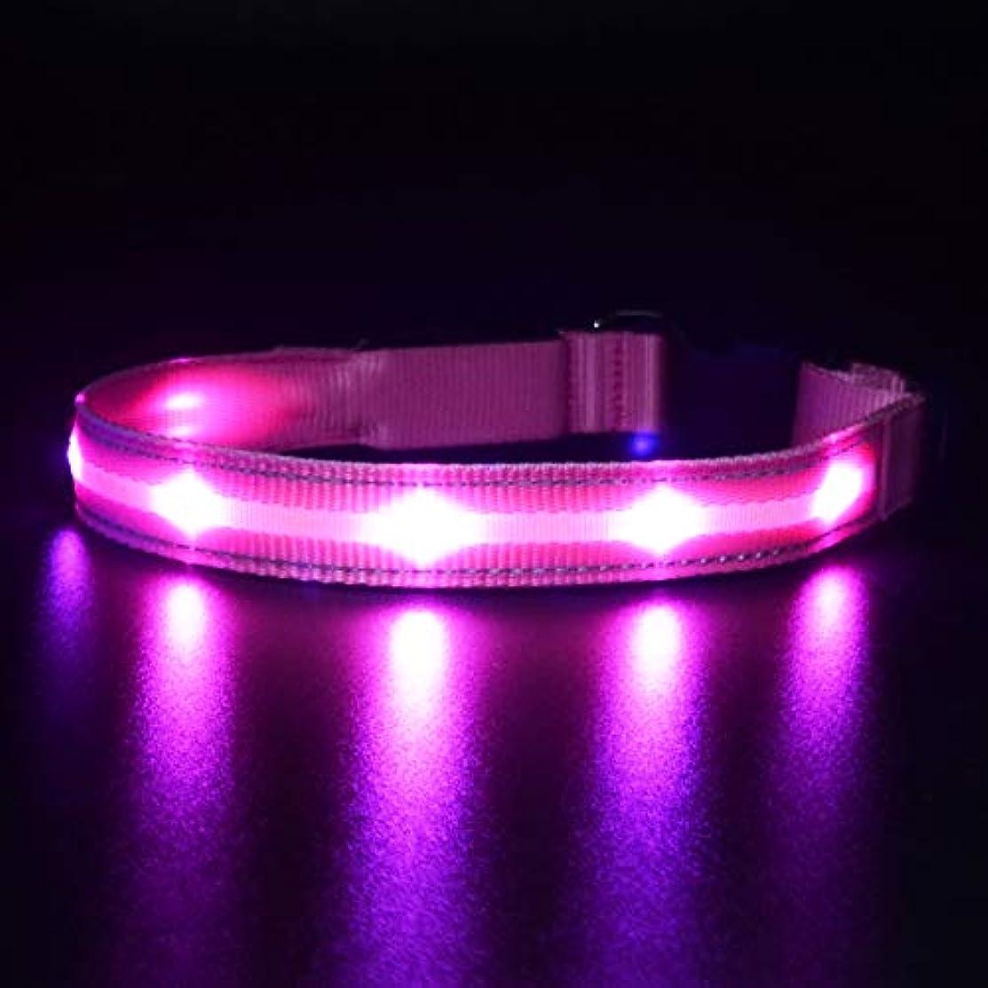 居間発音出発するMASBRILL LED光る首輪、防水USB 再充電  猫用 犬用 蛍光·安全首輪、ペット 夜間 安全性、犬の安全対策。強力なLEDライト 1000m先から目視可能。3種類のライトモードを搭載、小型犬や中型犬や大型犬に適しています。