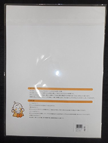 MSP 洋風 命名紙 6枚 セット ミニー 保管 鶴亀 めでたい 赤ちゃん 名づけ 記念 一生の思い出